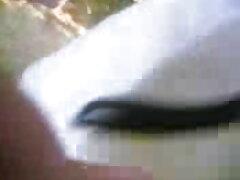 সুন্দরী বালিকা চুদাচুদি ভিডিও বাংলা